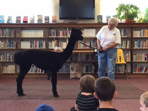 Chiquita visits the library
