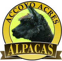 Accoyo Acres Alpacas
