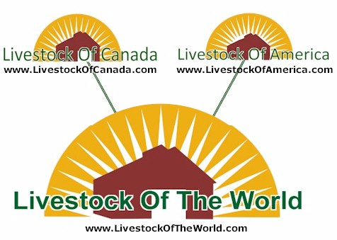 Livestock Of The World